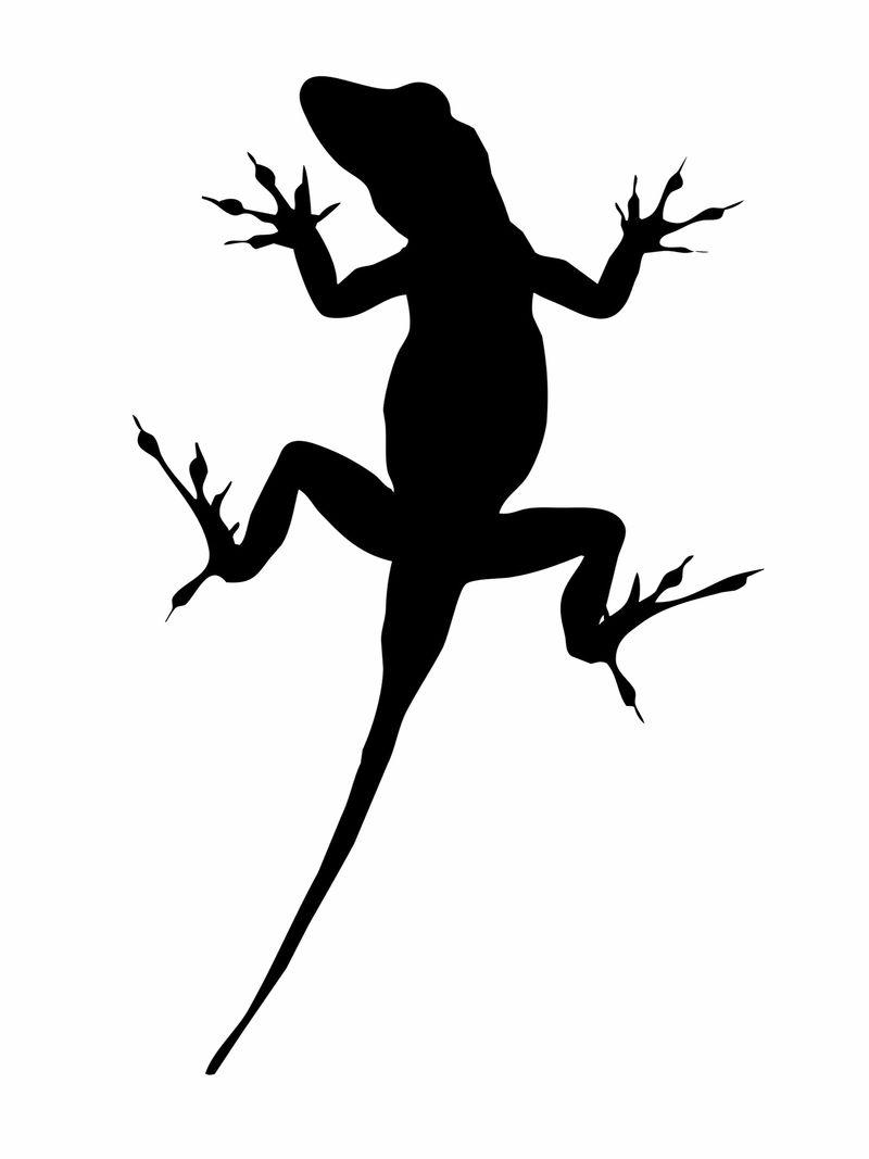 Linchpin - Lizard Brain